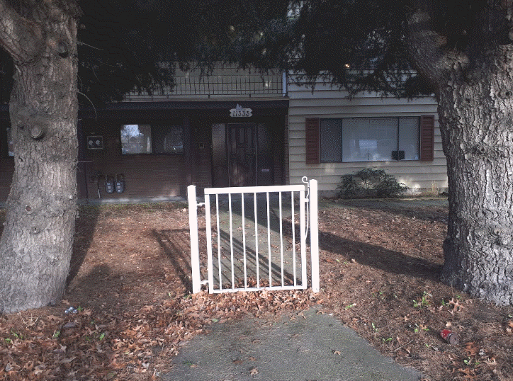 gate-no-fence.png